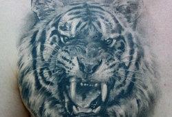 Большой Каталог Татуировок — фото, эскизы - картинки тату ...